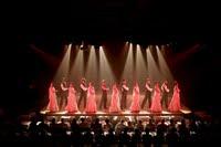 Flamenco_piramides_de_arona